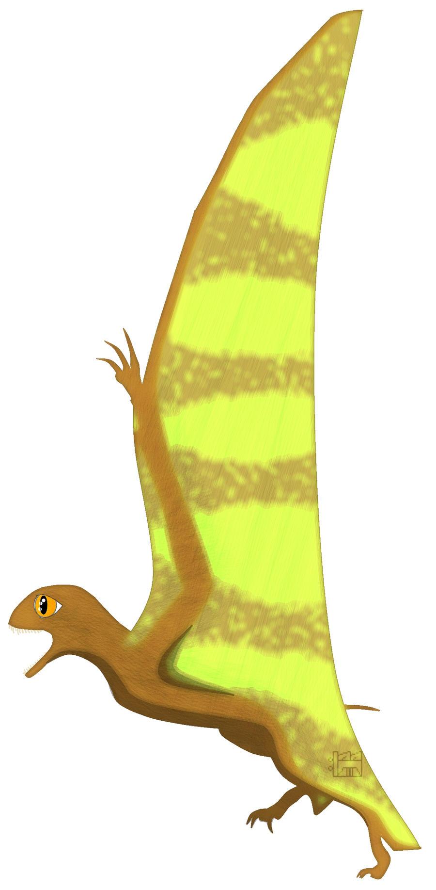 jeholopterus