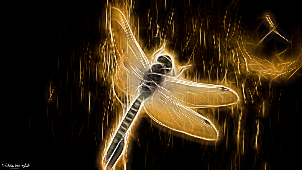 Neon Golden Dragonfly by destructiveburn