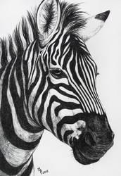 Stripes by Lylenn