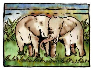 Kissing Elephants by buddygirlgreetings