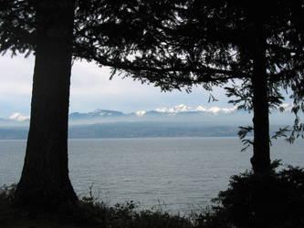 Mountain Mist by buddygirlgreetings