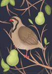 Partridge  Pear