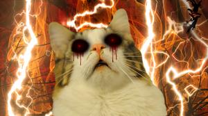 Demoncat