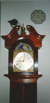 Mahogany Long Case Clock