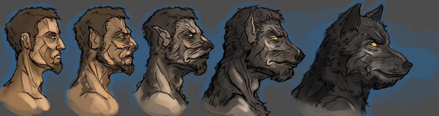 Werewolf transformation art - photo#18