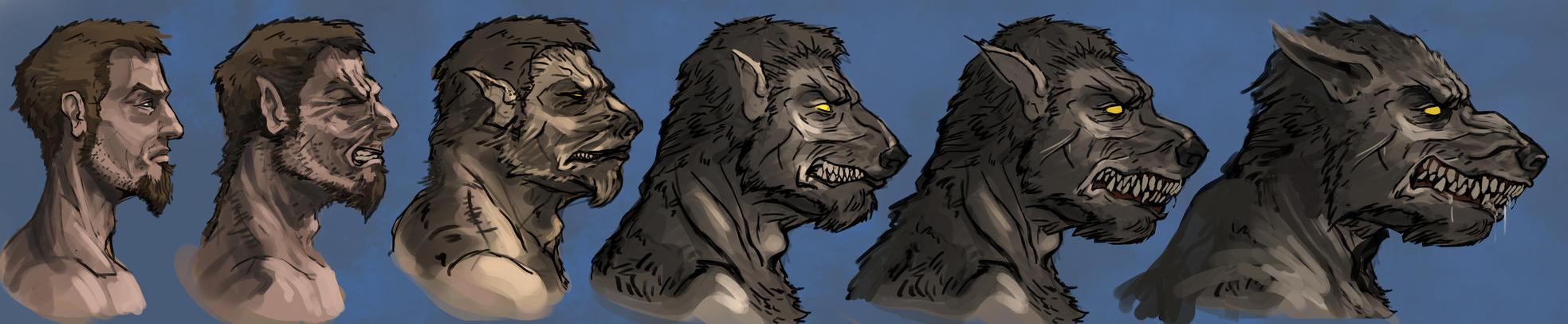 Werewolf transformation 2 by Andy-Butnariu