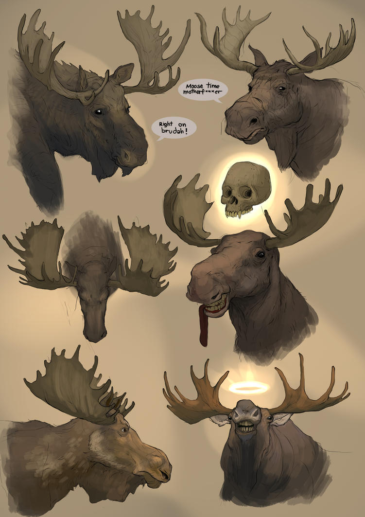 Moose time is good time
