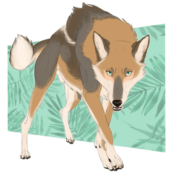 Coyote Green by its-just-business