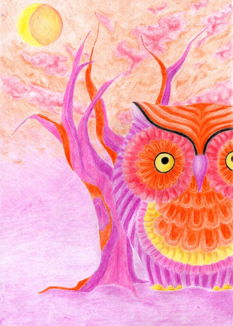 Warm winter dawn for an owl by Valesco