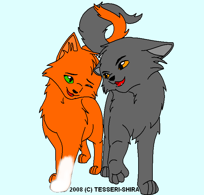 Warriors Cats Cinderpelt Stormfur and Squirrelf...