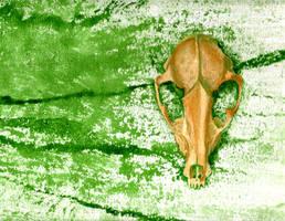Ebay Pet Skull by oz-haver