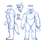 K-9 Agency Werewolf Concept