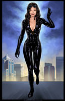 Commission: Cat Woman for Jimcomp by johnbecaro