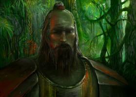 samurai lord by yonaz