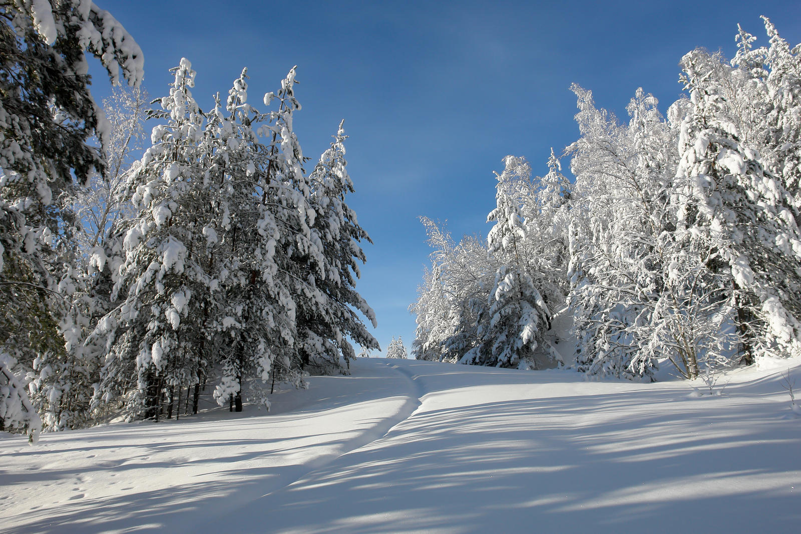 winter view 7 by birel on deviantart