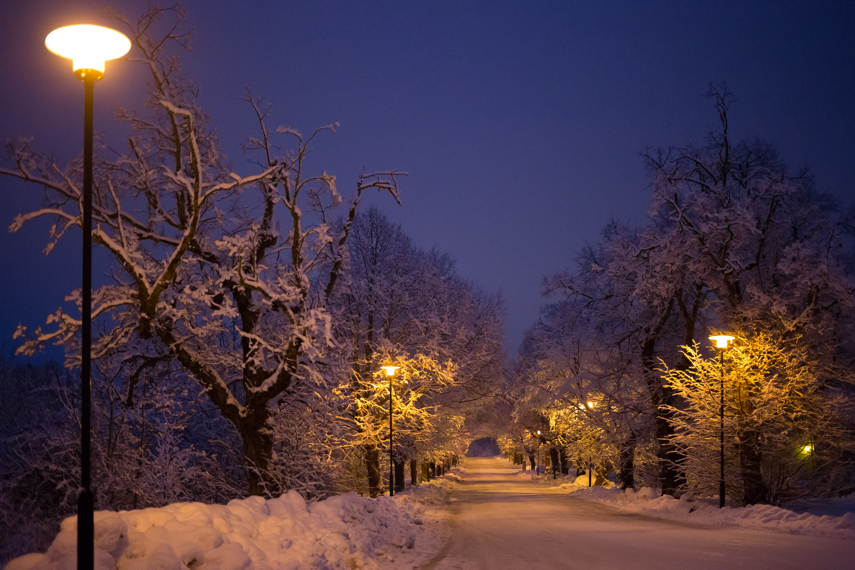 Winter 2015 by BIREL