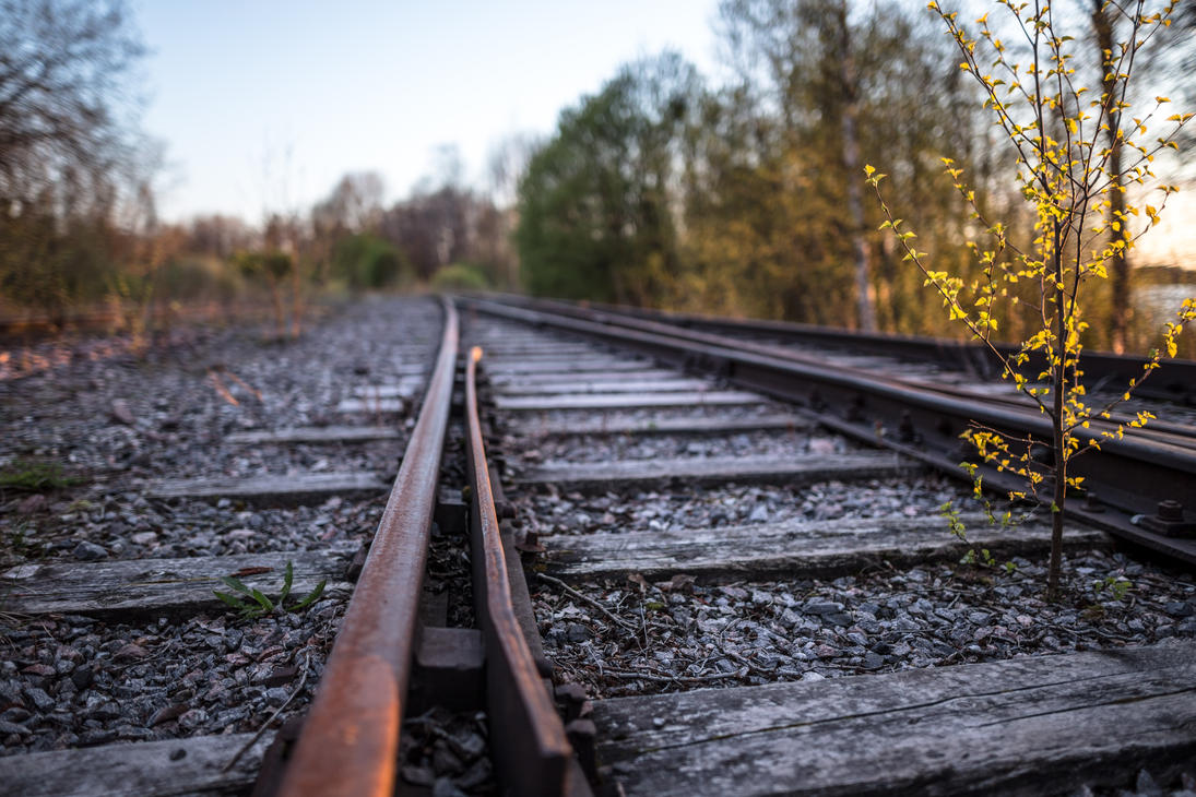 Old railroad by BIREL