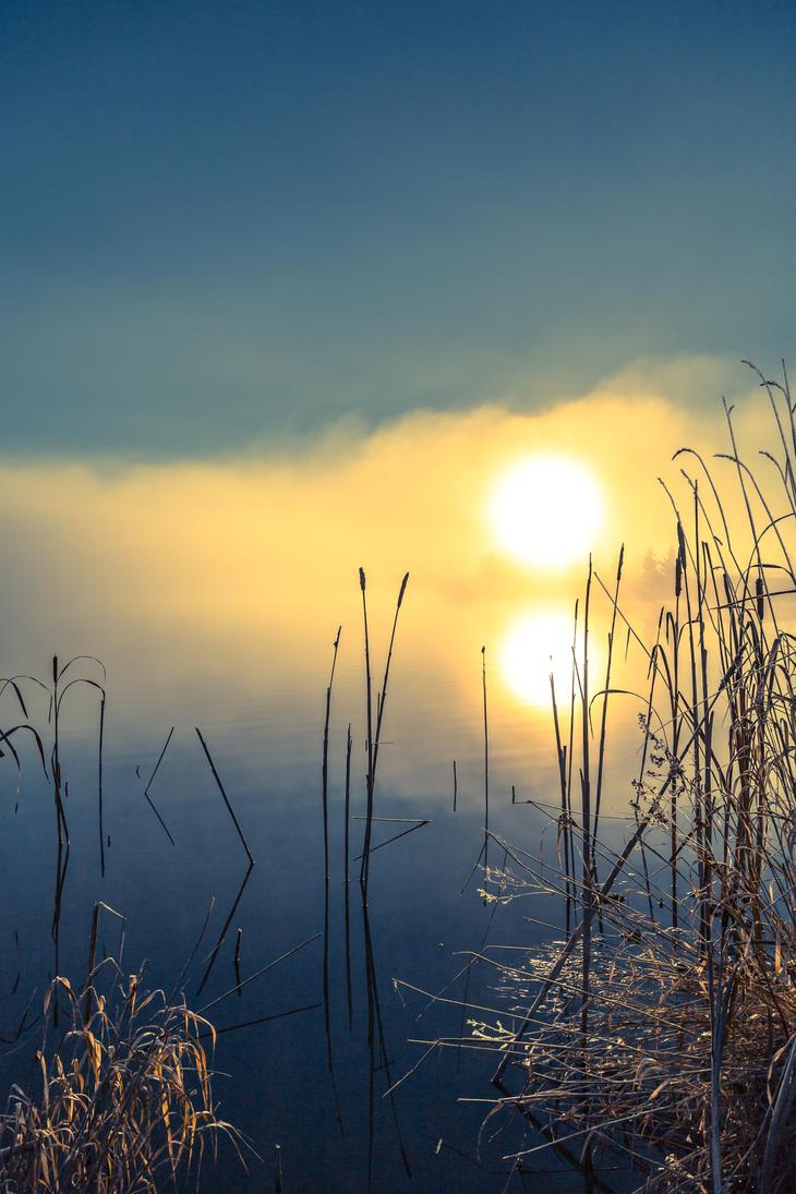 Sunrise in the fog by BIREL