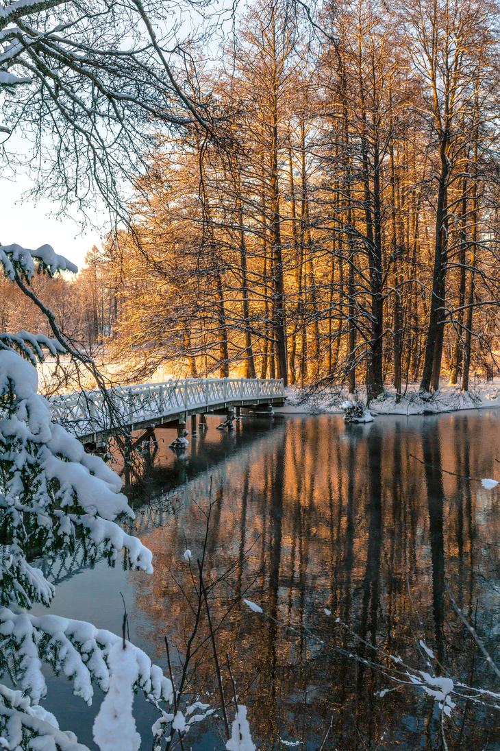 River in winter by BIREL