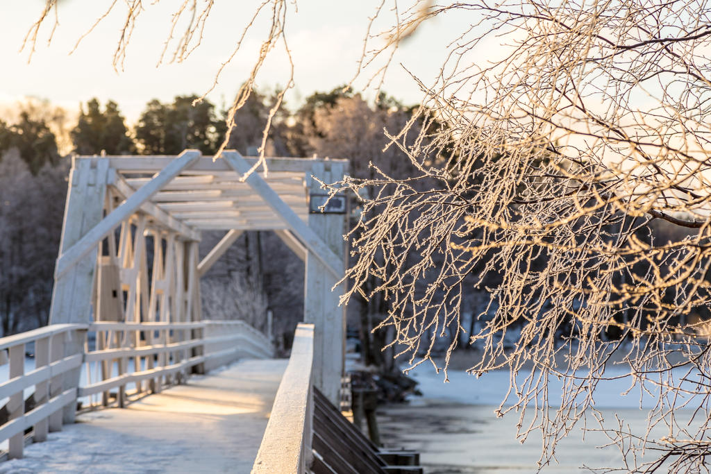Frosty morning on the island by BIREL