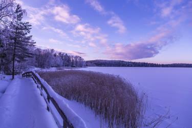 Winter landscape by BIREL