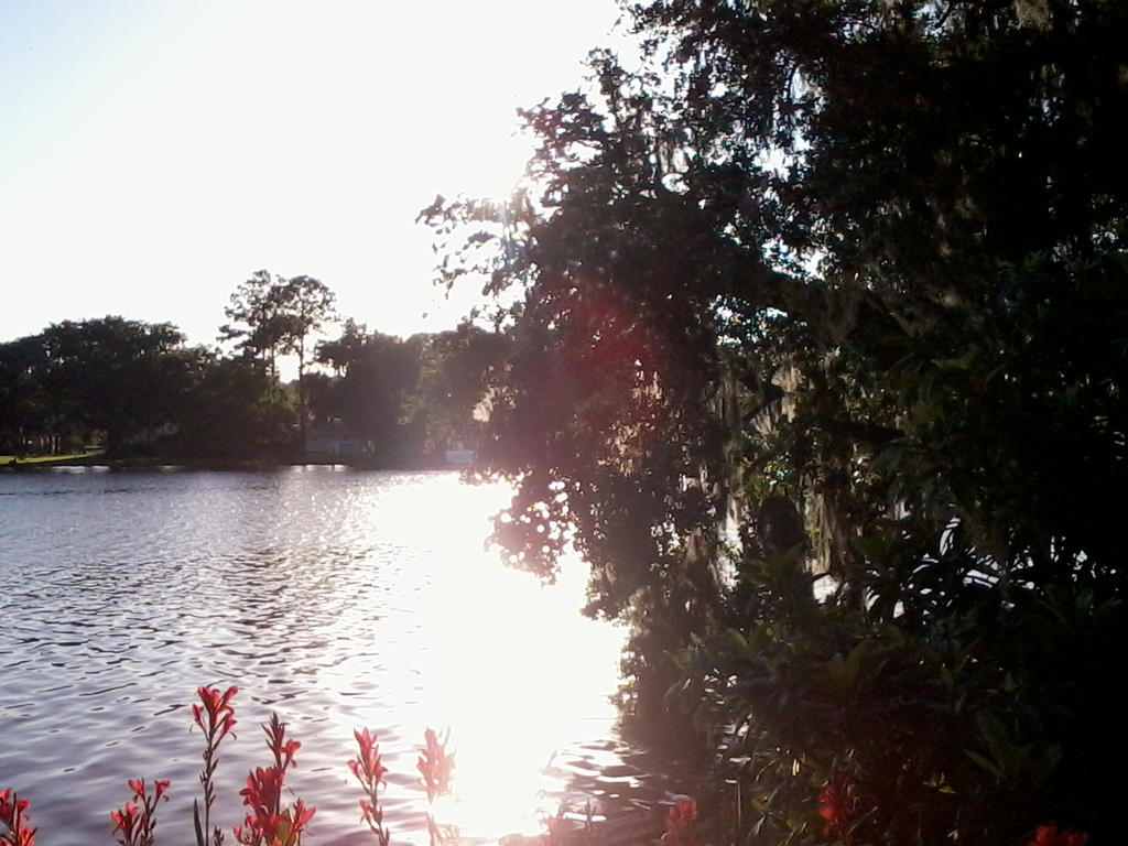 Sunlight on the River by Silver-Tiamat