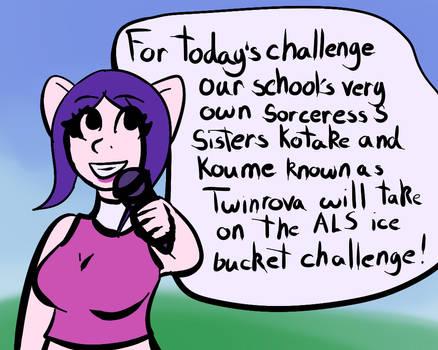 loz ice bucket 04