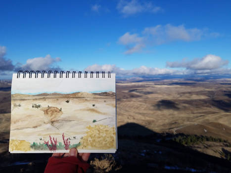 Landscape VS Painting: Steptoe Butte