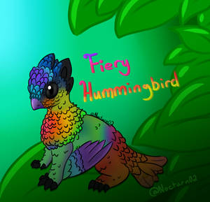Fiery Hummingbird Sikeri  (Approved)