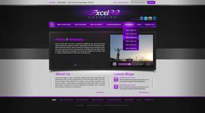 ExcelR8 website design