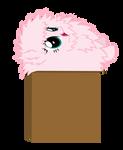 Fluffle Puff In A Box