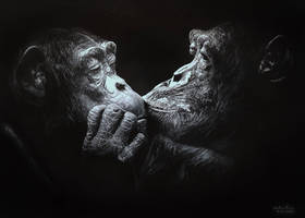 The Kiss by GiovanniChis