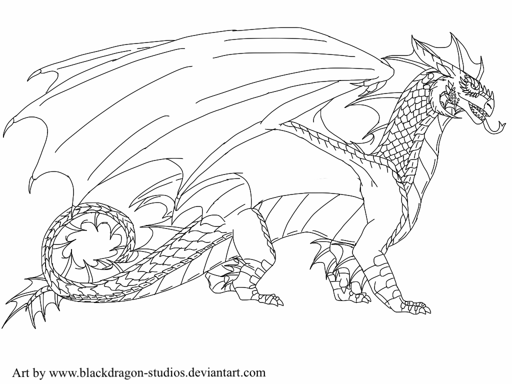 Wings of Fire: StormWing Tribe lineart by BlackDragon