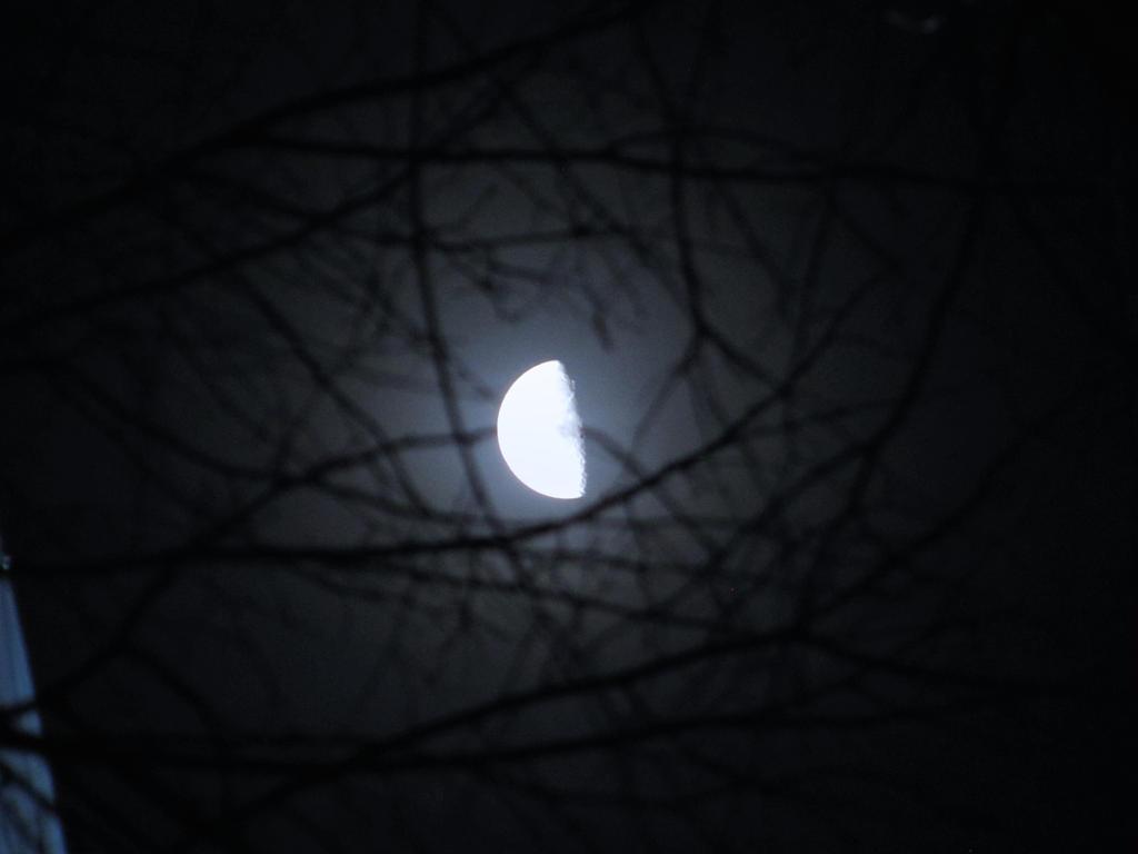 Mooneyes by DeepGarageHead