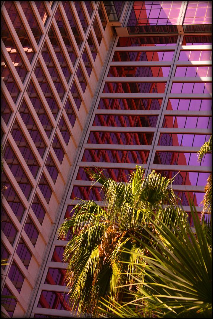 The Flamingo by viewsionone