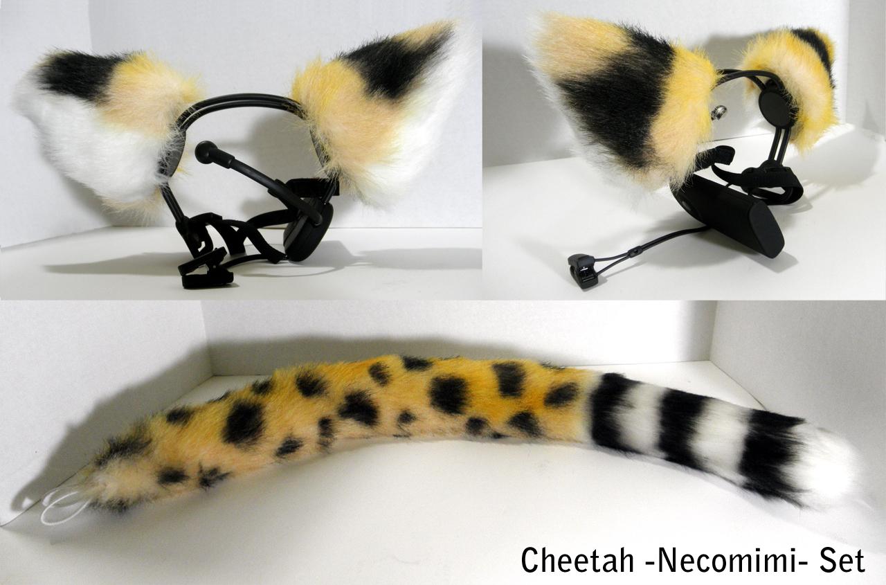 Real cheetah ears