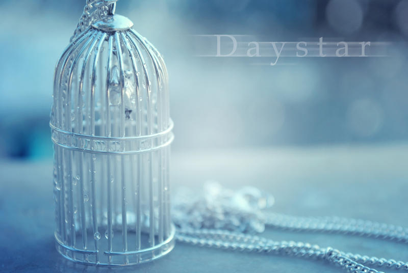 Tiny cage by Daystar-Art