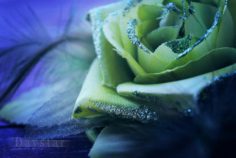 Winterheart by Daystar-Art
