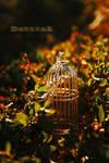 Summer glow by Daystar-Art
