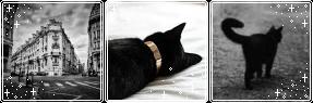 chat noir aesthetic?? by Catatombi