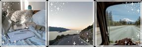 road trips by DaytimeDeer