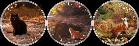 https://orig00.deviantart.net/beab/f/2016/246/f/9/dddddddddfffffffff_by_daytimedeer-dagcrvz.png