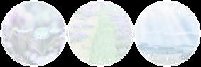 http://orig10.deviantart.net/3d0c/f/2017/014/4/c/sweet_bunni_by_daytimedeer-davf6vw.png