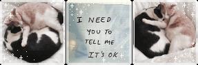 tell me its okay