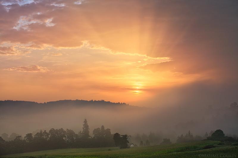 The misty awakening by MaximeCourty