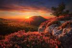 The Unforgettable Wilderness
