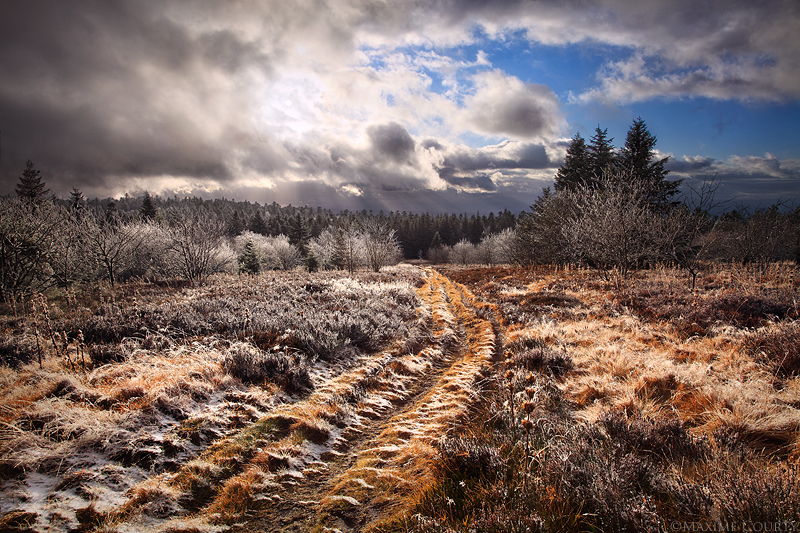 Illuminated Highlands by MaximeCourty