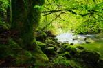 Green Riverside