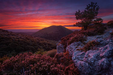 At the very end of the Day by MaximeCourty
