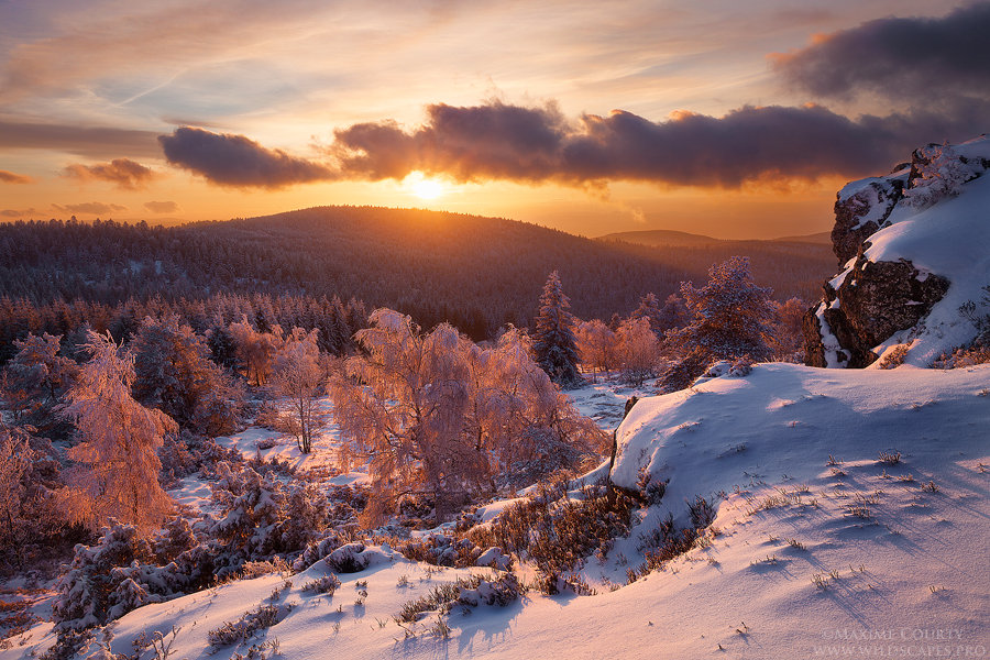 Winter Sunset by MaximeCourty